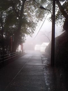 20081127高尾山2
