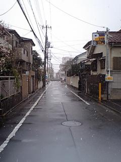 20090227雪.JPG