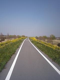 20090407荒川.JPG
