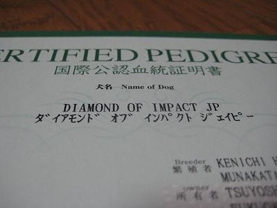 国際公認血統証明書