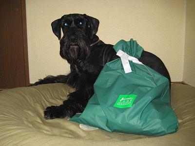 大きな袋でアル…