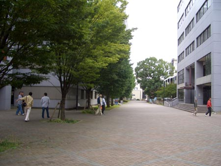 20080929_4.jpg