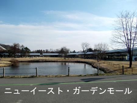 20090401_3.jpg