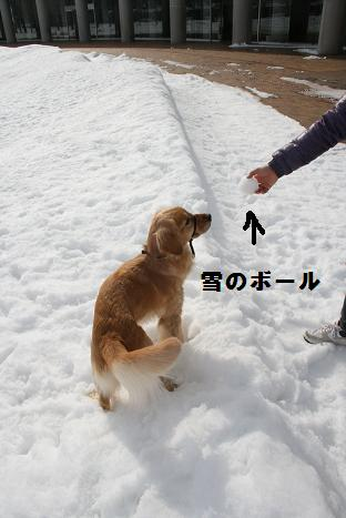 雪のボール