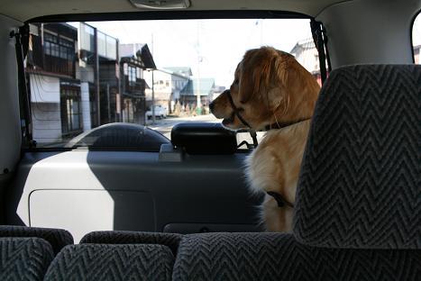 後ろに乗せて