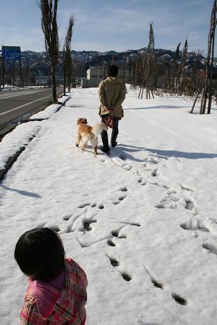 雪の歩道を歩く