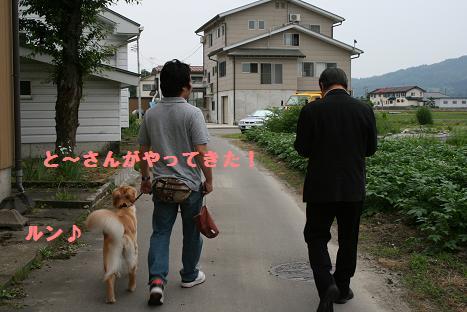 とーさんと散歩