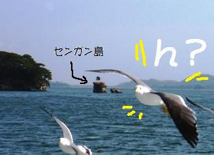 081210matuyuuransen6.jpg