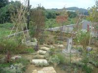 先生宅のお庭