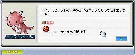 0158_20100202015355.jpg