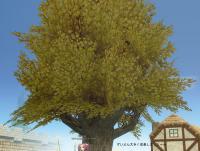 mabinogi_2007_11_22_014.jpg