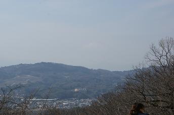 DSC06710-fuji.jpg
