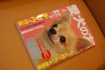 DSC08200-aiken.jpg