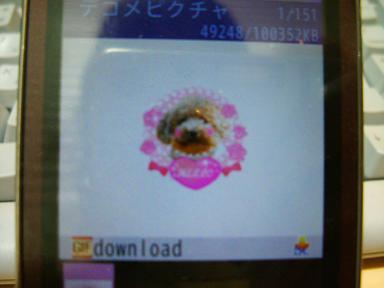 DSCF8788-k.jpg