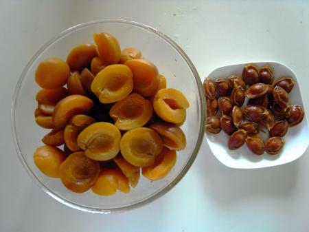 杏酒の実と種