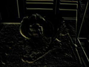 暗い・・・