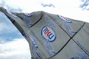 2008-419