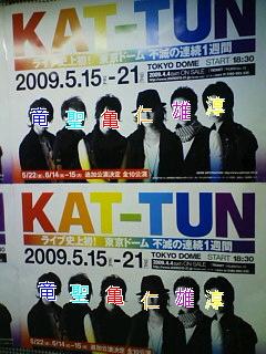 20090404163527.jpg