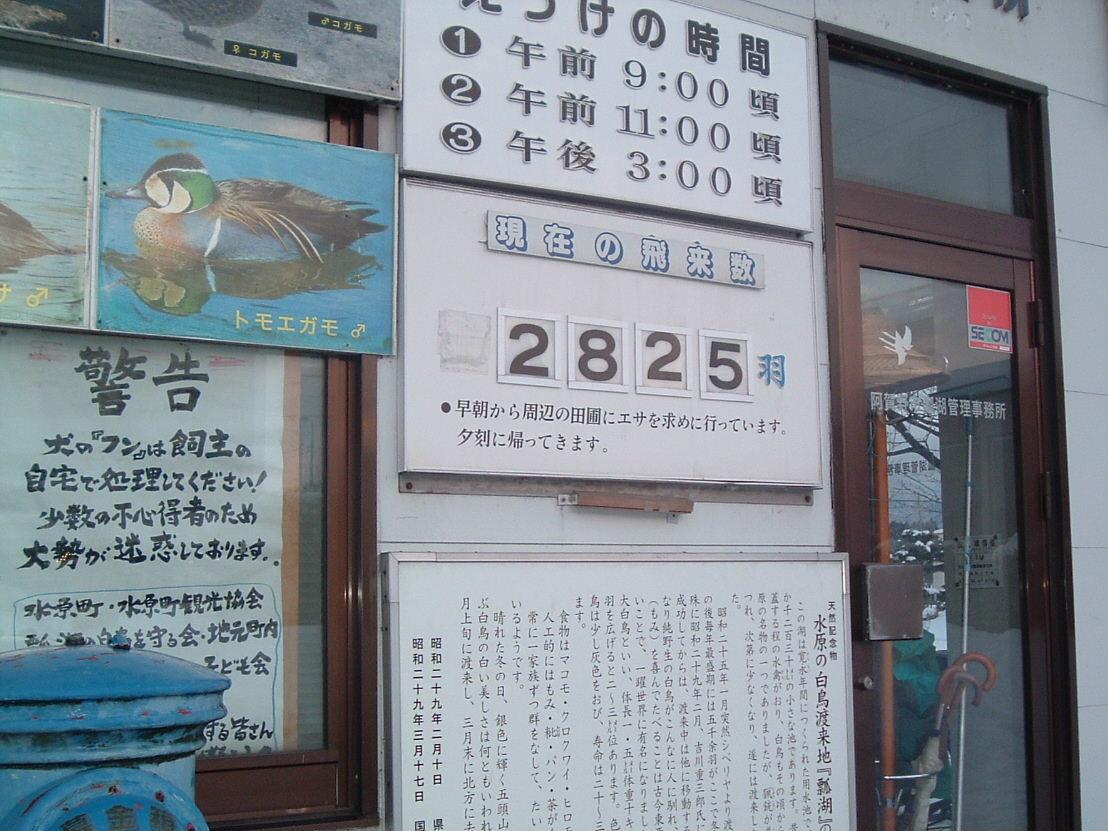 2008_0119LL0037.jpg