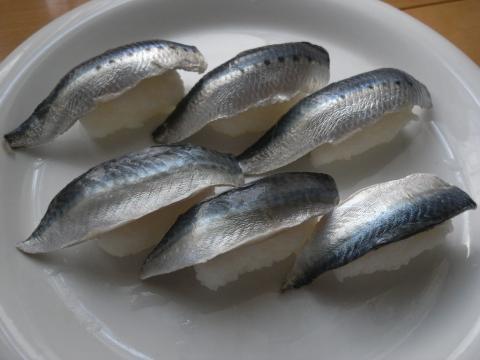 鰯(いわし) マイワシ 〆サバ〆イワシ寿司2