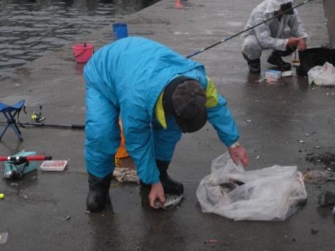 ホッケ(ほっけ)釣り 積丹盃(カブト)漁港