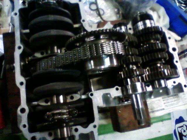 TS3G0071.jpg