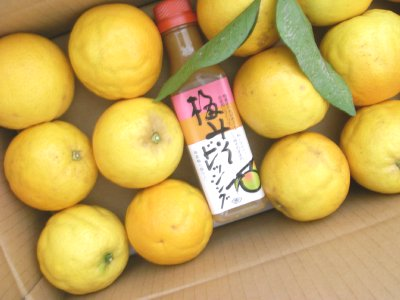 和歌山からの贈り物