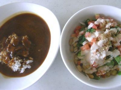 ビーフハヤシとゴロゴロサラダ