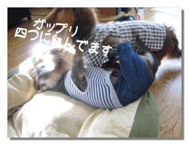 nawabari05085.jpg
