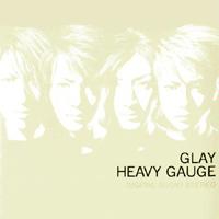 heavy_gauge.jpg