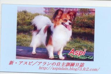 200827・アスピの名刺