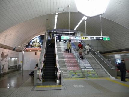 P1120479.jpg