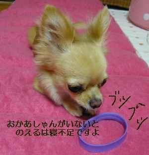 blog2008083102.jpg
