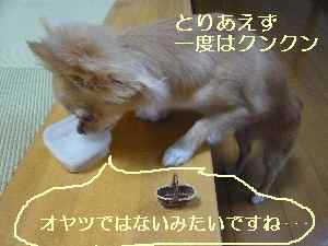 blog2008090702.jpg