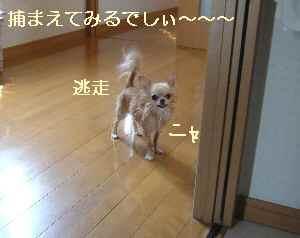 blog2008091103.jpg