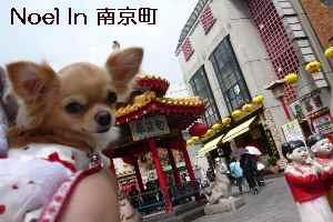 blog2008091211.jpg