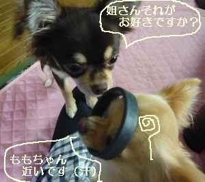 blog2008092207.jpg