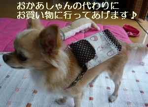 blog2008092601.jpg