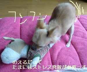 blog2008092802.jpg