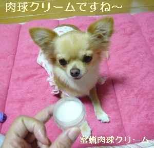 blog2008100502.jpg