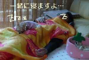 blog2008100601.jpg