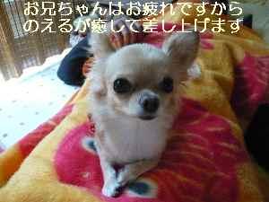 blog2008100602.jpg