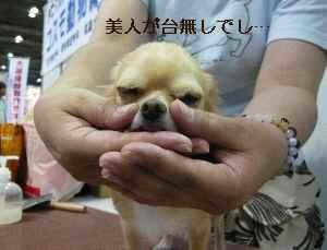 blog2008101305.jpg