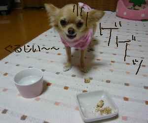 blog2008101404.jpg