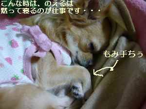 blog200810205.jpg