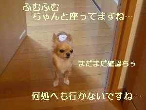 blog2008102302.jpg