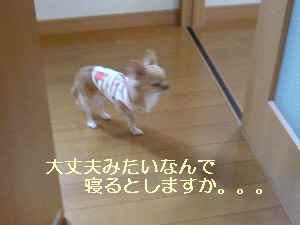 blog2008102303.jpg