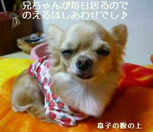 blog2008110403.jpg