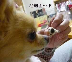 blog2008111003.jpg
