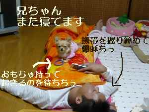 blog2008111701.jpg